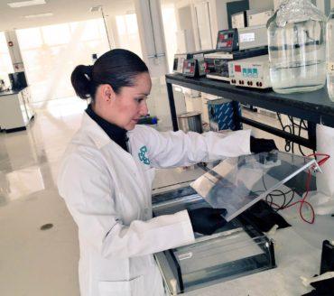 Fungi Genomic DNA Extraction