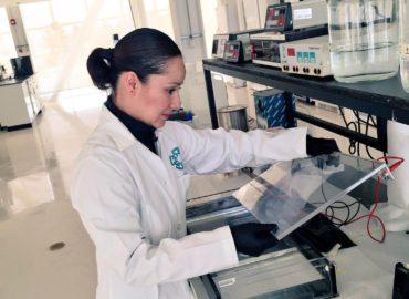 Extracción DNA Genómico de Plantas e Identificación de Hongos y Bacterias